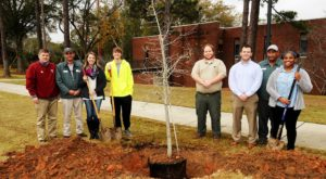 Tree-planting events, like this one on the Troy Campus, were held at each of TROY's four Alabama Campuses as a part of the Tree Campus USA program.