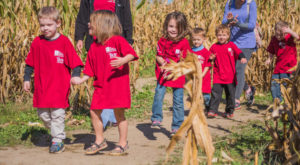 Children walk through a corn maze during a Troy University-sponsored field trip.