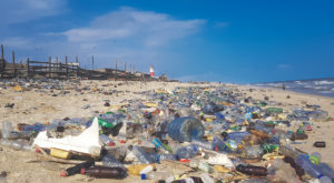 Plastic pollution on a beach in Ghana. TROY's Dr. Govind Menon testified before the U.S. House on the need for innovation in plastics recycling.