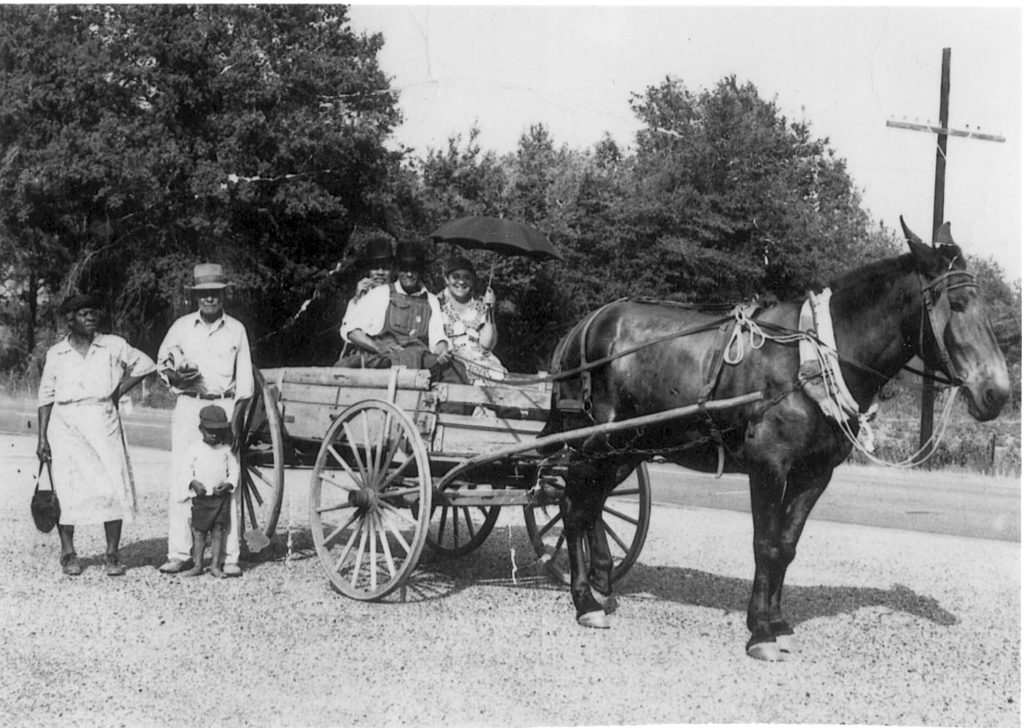 A black-and-white photograph of an African-American family in Columbia, Alabama. Six members of the extended Weems family surround a horse and buggy.