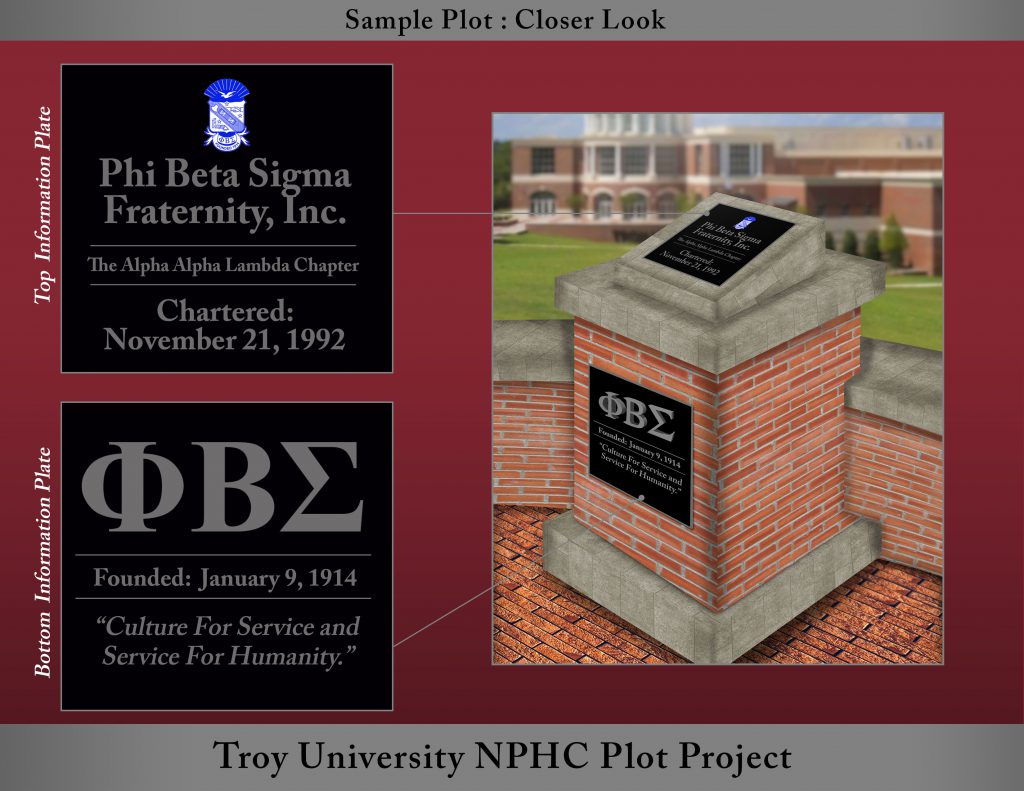 Conceptual image of one of the NPHC plots.