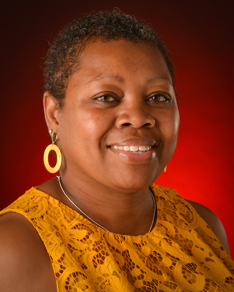 Dr. Sherrionda H. Crawford, Ph.D., LPC-S, NCC, Interim Department Chair for TROY College of Education Counseling, Rehabilitation and Interpreter Training Division