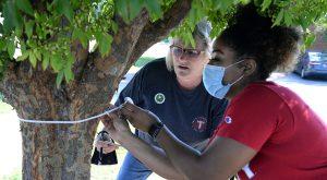 Phenix City Campus seeks to raise awareness of proper tree planting, care through Tree Campus activities